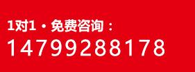 免费咨询:09916653280